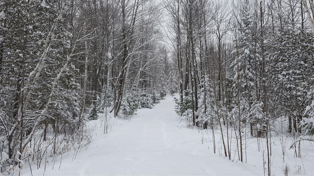 hiver cantons-de-l'est